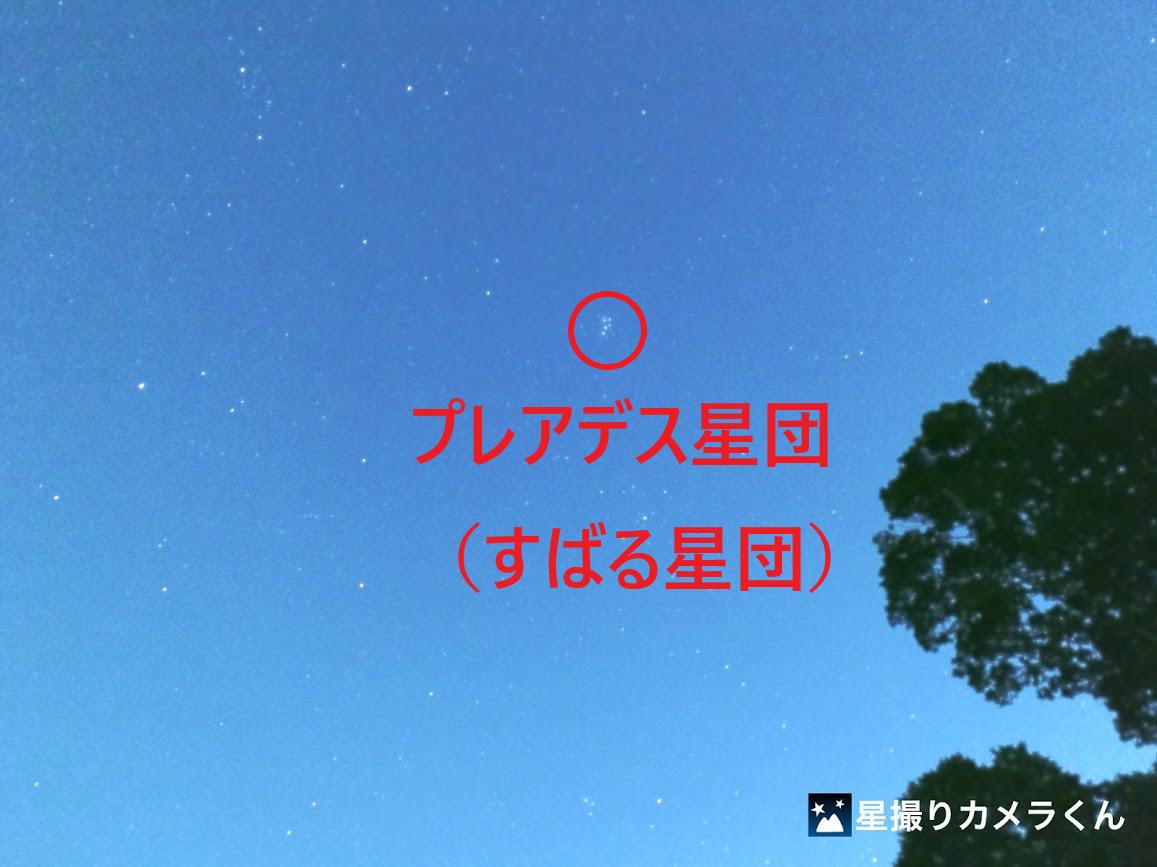 kashiwa-teganooka-park-pleiades.png