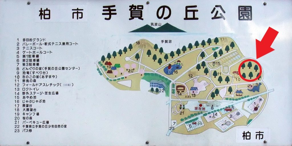 kashiwa-teganuma-weeping-cherry-tree-map.jpg