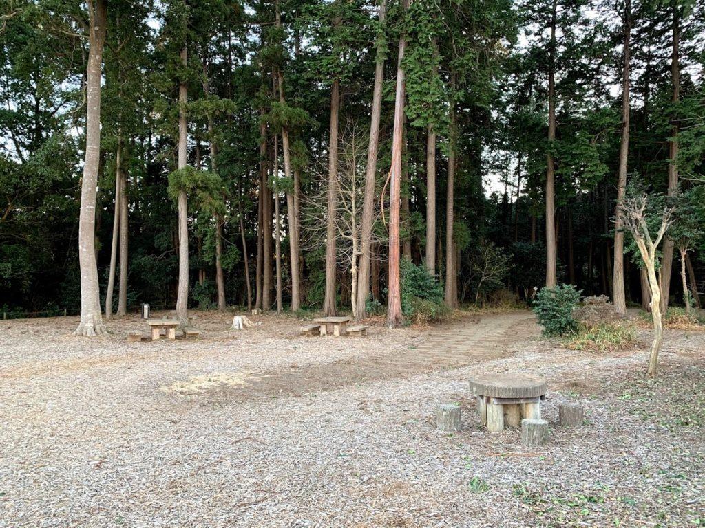 teganooka-park-viewing-platform02.jpg